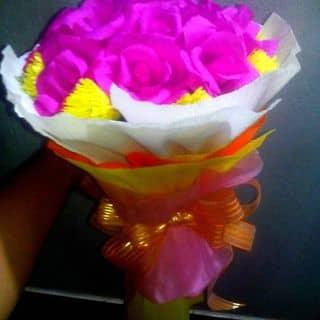Hoa giay của mayle5 tại Vĩnh Long - 2320646