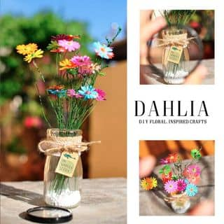 hoa giấy Dahlia của mup90 tại Hồ Chí Minh - 2961381