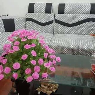 Hoa giay lua của lsngavi tại Bắc Ninh - 2215850