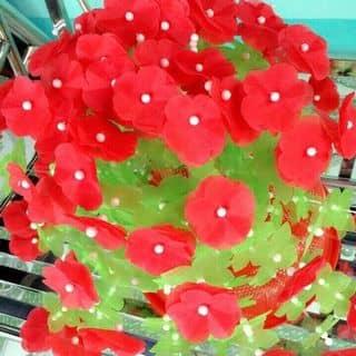 Hoa handmade của mushroom1 tại Hồ Chí Minh - 2458912