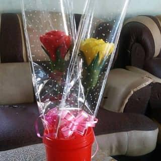Hoa hồng của phamsuong24 tại Ninh Thuận - 3152053