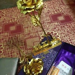 Hoa hồng của rose7 tại Bà Rịa - Vũng Tàu - 1258680