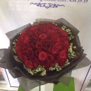 Hoa hồng bó lá của phamdi7 tại Trần Đại Nghĩa, Phường 4, Thành Phố Vĩnh Long, Vĩnh Long - 2566291