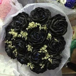 Hoa hồng giấy nghệ thuật của thi156 tại Hậu Giang - 2674301