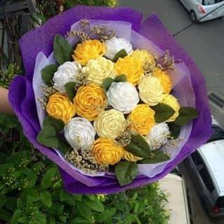 Hoa hồng giấy nhún của thi156 tại Hậu Giang - 2620657