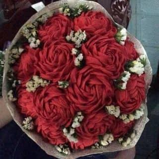 Hoa hồng giấy nhún của thi156 tại Hậu Giang - 2665110