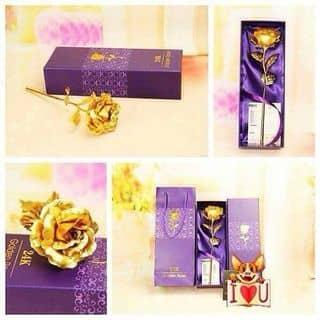 Hoa hồng mạ vàng của cungaytho tại Bắc Ninh - 1020675