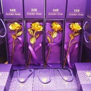 Hoa hồng mạ vàng của nguyenkhanh65 tại Chợ Trà Vinh, phường 3, Thị Xã Trà Vinh, Trà Vinh - 1187410