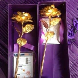 Hoa hồng mạ vàng 24k mỏng của dangmaxx tại 69, 30 Tháng 4, Thành Phố Mỹ Tho, Tiền Giang - 1182844