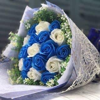 Hoa hồng sáp hàn quốc của nguyentamthanh tại Bình Dương - 2527398