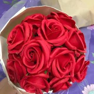 Hoa hồng sáp Korea của visao2 tại Tiền Giang - 2787924