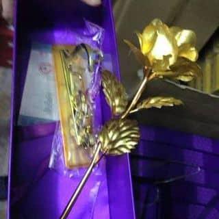 Hoa mạ vàng của phamnga63 tại Vĩnh Yên, Thành Phố Vĩnh Yên, Vĩnh Phúc - 1171449