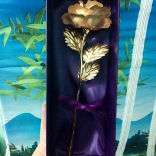 Hoa mạ vàng siêu rẻ của nanamimi tại Thái Bình - 2576046