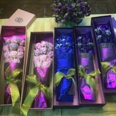Hoa sap 11 bông của Huong Giang tại T2 cafe - 1219655