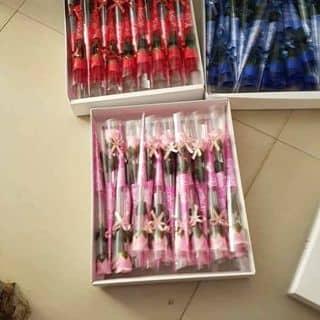 Hoa sap của thaocoi717 tại Phú Thọ - 2252662