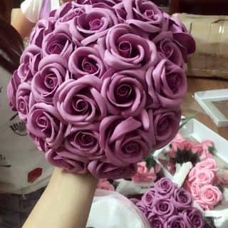 Hoa sáp thơm của rubythao7 tại Lai Châu - 1218437