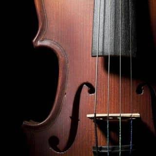 Học Guitar Miễn Phí của ngocanhchinh tại Shop online, Huyện Mường Tè, Lai Châu - 2490919