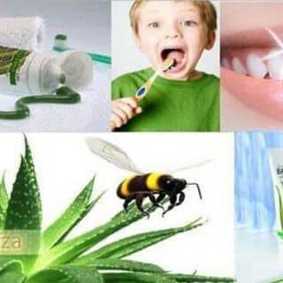 Kem đánh răng cho bé và mọi lứa tuổi của hu696 tại Cần Thơ - 2281597