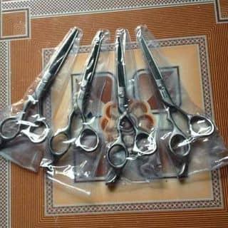 Kéo cắt tóc Kendali của ha_dieu tại Vĩnh Phúc - 862955