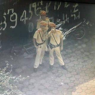 Kinghero của nguyenhung1446 tại Hồ Chí Minh - 2472734