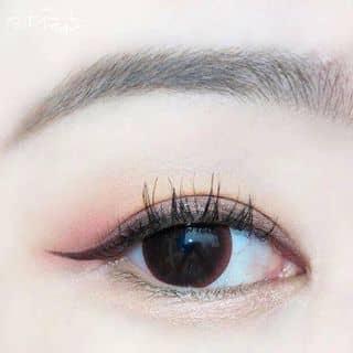 Lens mắt Bình Dương-Angel eyes của lamkimthoa tại 72 Ngô Quyền, Thị Xã Thủ Dầu Một, Bình Dương - 524036