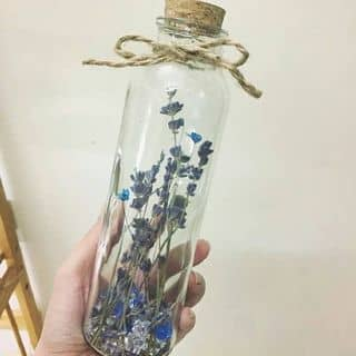 Lọ ước hoa Lavender của sen_da_xinh tại 18/165 Đà Nẵng, Vạn Mỹ, Quận Ngô Quyền, Hải Phòng - 1204649