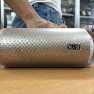 Loa bluetooth 340k của thaovannguyen7 tại Hồ Chí Minh - 2681720