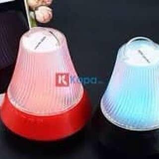 Loa Bluetooth nghe nhạc có đèn của phamtran50 tại Hồ Chí Minh - 2957471