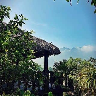 Mai Chau Ecolodge của cuong9412 tại Bản Nà Thia,  Xã Nà Phòn, Huyện Mai Châu, Hòa Bình - 3706756