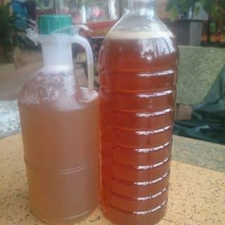 Mật nhãn, mật cà phê đây ạ của thuythu222 tại Đắk Lắk - 1965833