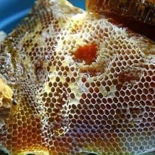 Mật ong đây ạ, giá 260k/lít của matongnguyenchat1 tại Đồng Tháp - 1821887