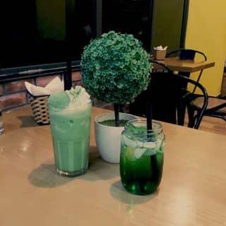 Matcha đá xay và trà táo bạc hà của toshirotq tại 131 Trần Phú, Thị Xã Tuyên Quang, Tuyên Quang - 543792