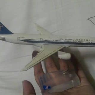 Máy bay năm 2009 của nguyentrung110 tại Kiên Giang - 829531