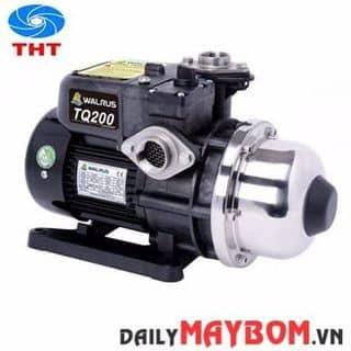Máy bơm nước tăng áp giá rẻ Walrus TQ-200 1/4 HP của huynhdiep2585 tại Hồ Chí Minh - 2905057