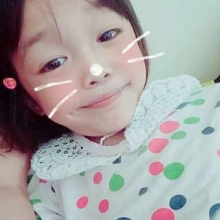 mèo của loanhong43 tại Shop online, Huyện Bình Giang, Hải Dương - 3385553