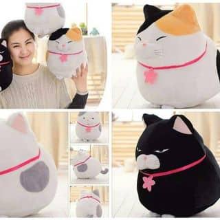 Mèo banh của phambaoly tại Cần Thơ - 2692294