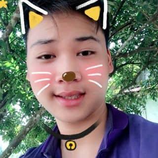 Mèo con của phongdu3 tại Hà Giang - 1220828