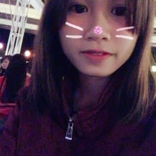 Mèo con lovely của huynhminhquat tại Quảng Ngãi - 2673986