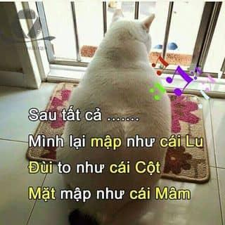 Meo map của chandai5 tại Hưng Yên - 2334060