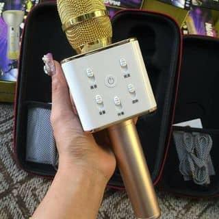 mic hát karaoke của eu01v5 tại Thái Nguyên - 1897991