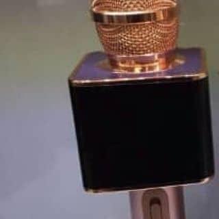 Micro kèm loa BLACK của vithienthien tại Đồng Tháp - 2082299