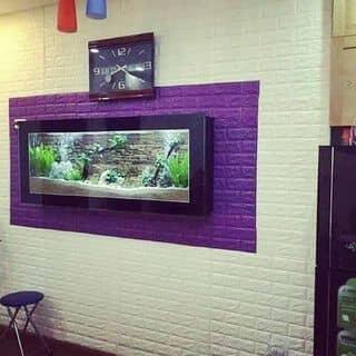 Miếng dán tường đẹp mê ly của nguyennhi805 tại Phú Yên - 2383549
