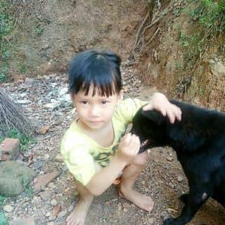 Miss của uocmit tại Shop online, Quận Hải Châu, Đà Nẵng - 2218608