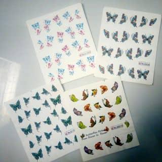 Nail stikers của vananhkty tại Kon Tum - 2490673
