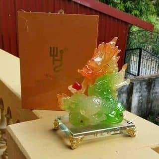 Ngọc phong thủy rồng  của nguyencady tại 422 Đào Trí, Phú Thuận, Chung cư everrich2, Quận 7, Hồ Chí Minh - 2960536