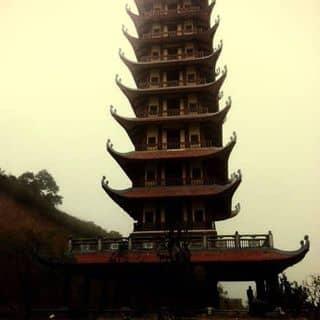 Nha của nguyenhaj4 tại Nghệ An - 2767742