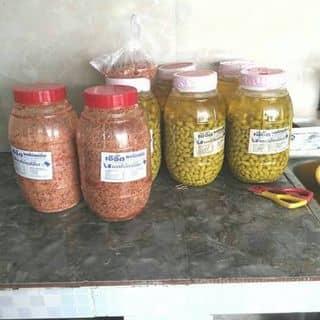 Nho Lào lắc muối ớt của ngochoai14 tại Bà Triệu,  P. 3, Thành Phố Đông Hà, Quảng Trị - 2273541