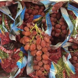 Nho Úc đỏ ko hạt của nhungwonderful6789 tại Hải Phòng - 2499390