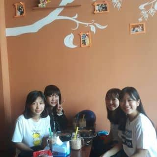 Những bé iu... đầu tiên của wán của lanluong tại 102 Phan Đình Phùng Chau Phú B, Thị Xã Châu Đốc, An Giang - 626430