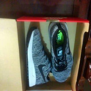 Nike Pegasus 32 của linhtong18 tại Hồ Chí Minh - 2459512